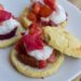 Paleo Strawberry Peach Shortcake (Nut-free, Low-carb)